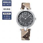 Snakeskin Big Dial watch watches women Kenzina Cool Glorious Simple Waterproof Fashion zhen she pi dai kuan women watch watches